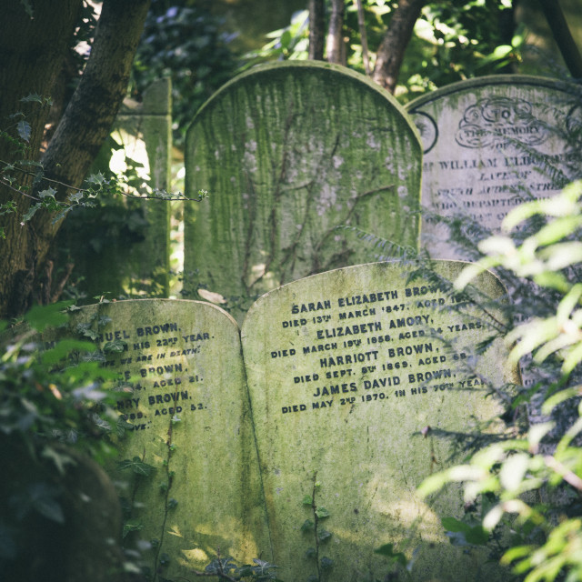 """Gravestones jostling in the undergrowth, away from the main path, Highgate..."" stock image"