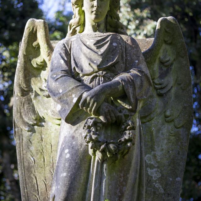 """Angel holding wreath, Highgate Cemetery west, London, England, United..."" stock image"