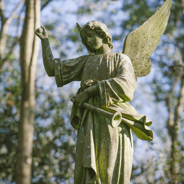 """Statue of an angel with a trumpet, Highgate Cemetery west, London, England,..."" stock image"