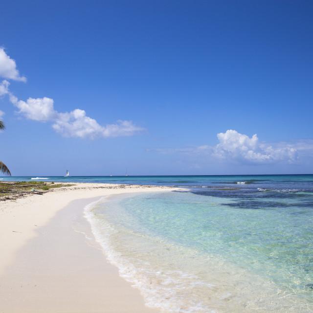 """Dominican Republic, Punta Cana, Parque Nacional del Este, Saona Island,..."" stock image"