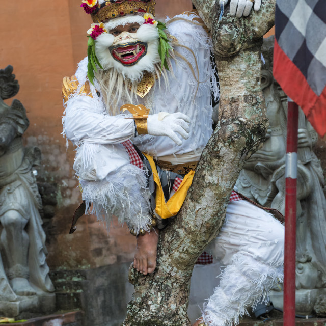 """Balinese Kecak dancer, Ubud, Bali, Indonesia, Southeast Asia, Asia"" stock image"