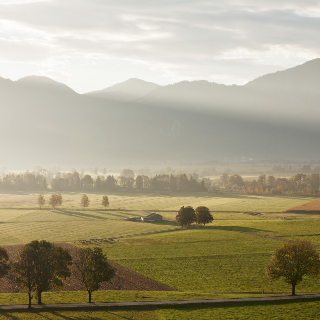 """Kochelmoos Moor, Hay Huts, Bavarian Alps, Upper Bavaria, Bavaria, Germany,..."" stock image"