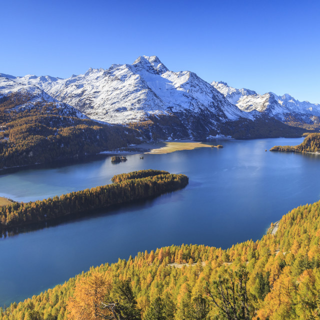 """Autumn approaching at Lake Sils near St.Moritz in Engadine, where Piz la..."" stock image"