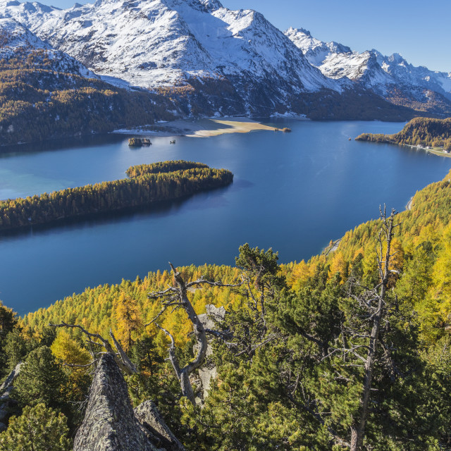"""Lake Sils and Piz la Margna covered in snow from a rocky terrace above the..."" stock image"
