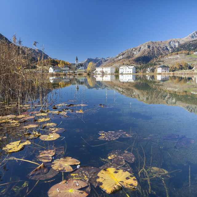 """The little village of Tarasp in Low Engadine reflecting in a nearby pond,..."" stock image"