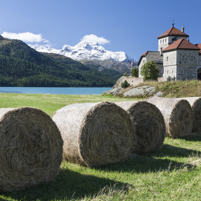 """Haystacks lying on the bank of Lake Sils in Silvaplana, by Saint Moritz,..."" stock image"