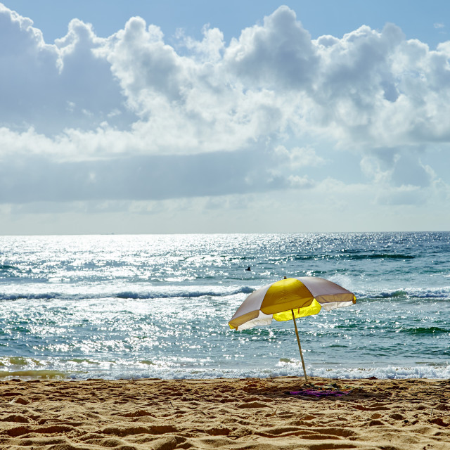 """""""Manly Beach, Manly, Sydney, New South Wales, Australia, Pacific"""" stock image"""