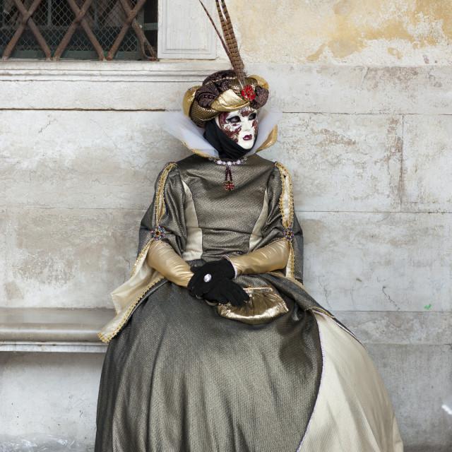 """""""Venice Carnival"""" stock image"""