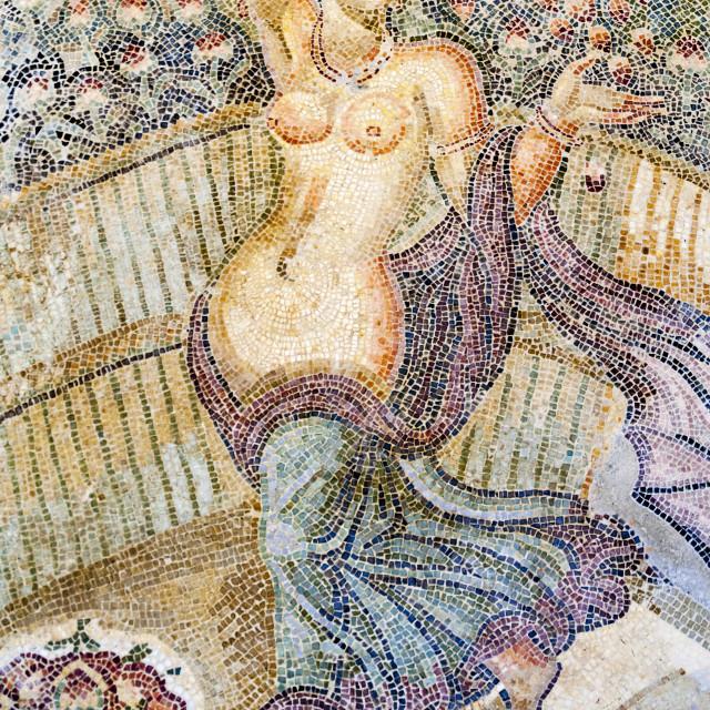 """Roman mosaic, Carthage National Museum, Byrsa Hill, Carthage, UNESCO World..."" stock image"
