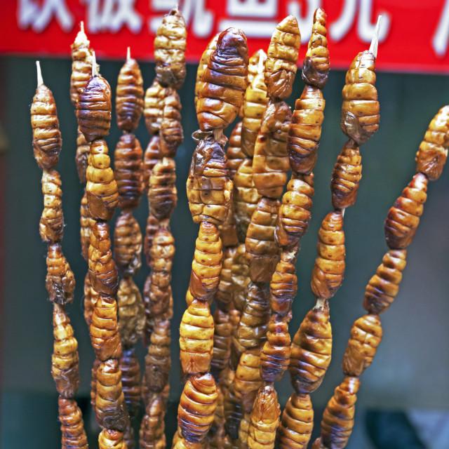 """Larvae on skewers for sale at Dong Hua Men night market, Beijing, China, Asia"" stock image"