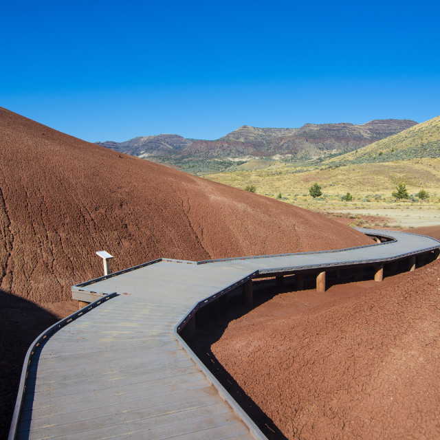"""""""Multicoloured strata hill in the Painted Hills unit in the John Day Fossil..."""" stock image"""