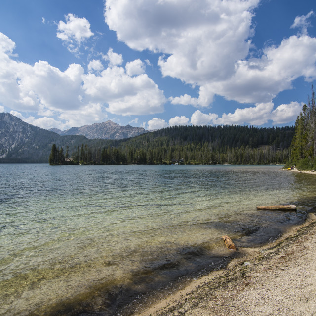 """""""Sandy beach on Pettit Lake in a valley north of Sun Valley, Sawtooth National..."""" stock image"""