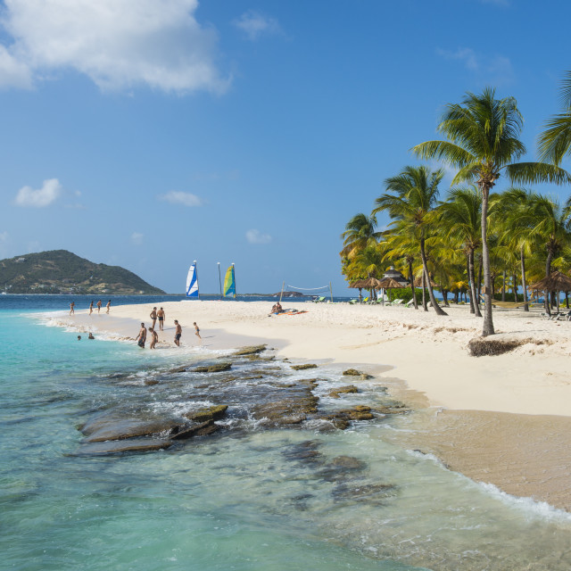 """""""Palm Island, The Grenadines, St. Vincent and the Grenadines, Windward..."""" stock image"""