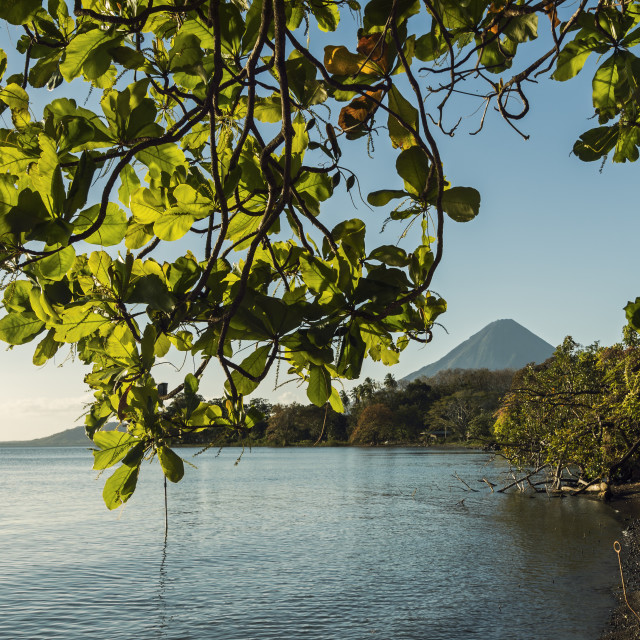 """Lakeside scene and Volcan Concepcion at Merida in island's South East,..."" stock image"