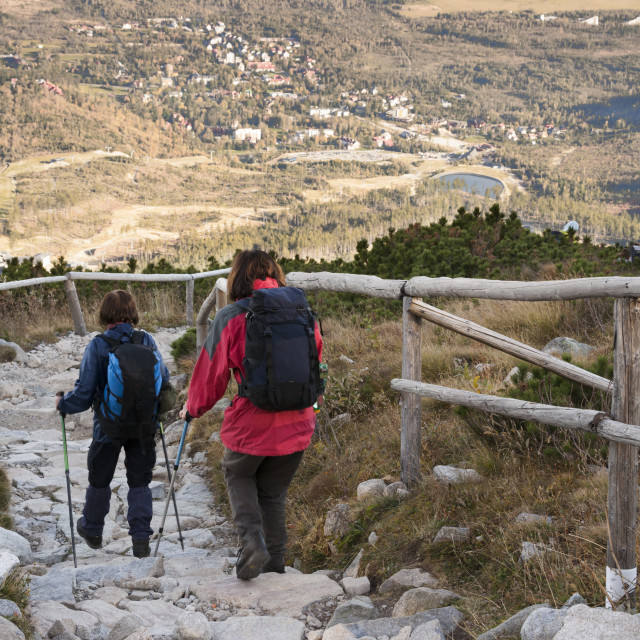 """""""Hikers with walking poles descend the 2.25 hour trail from gondola station,..."""" stock image"""