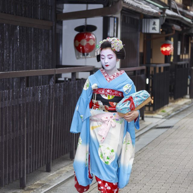 """Maiko, apprentice geisha, walks to evening appointment past traditional..."" stock image"