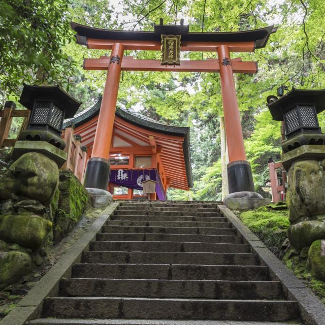 """Moss covered Shinto shrine surrounded by thick forest, Fushimi Inari Taisha,..."" stock image"