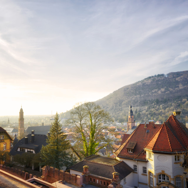 """An overview over the misty old town of Heidelberg city."" stock image"