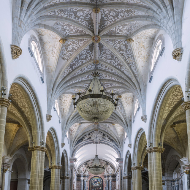 """""""The Manueline and Portuguese baroque cathedral church of Our Lady of the..."""" stock image"""