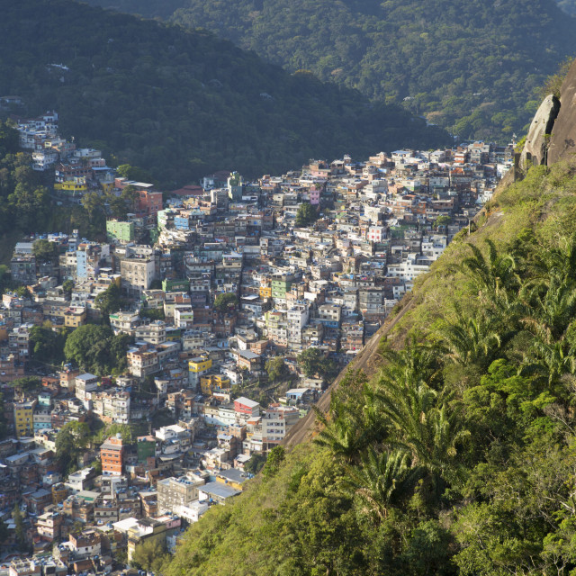 """""""View of Rocinha favela and the forest of Tijuca National Park, Rio de..."""" stock image"""