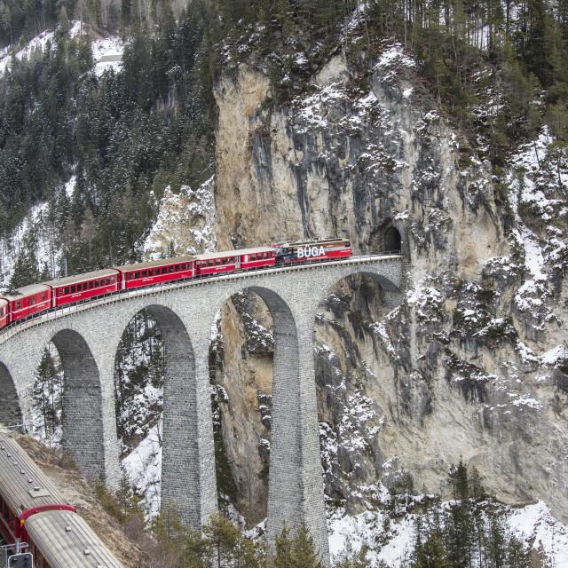 """Bernina Express passes through Landwasser Viadukt and snowy woods Filisur..."" stock image"