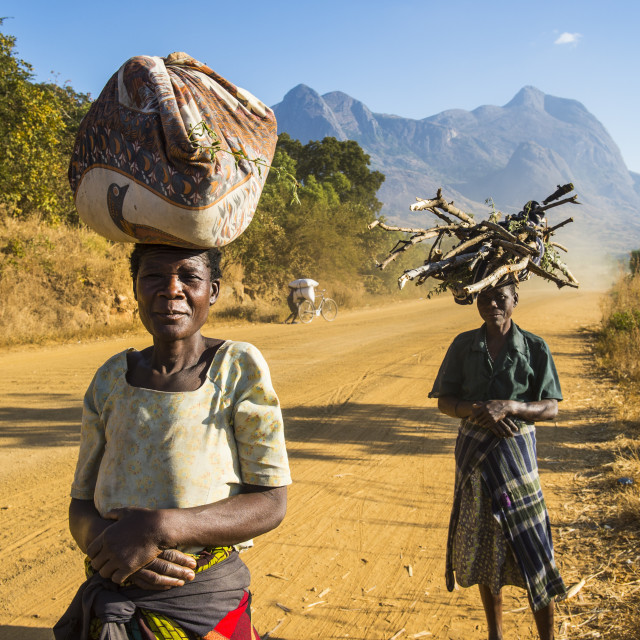 """Local women carrying their goods on their head before Mount Mulanje, Malawi,..."" stock image"