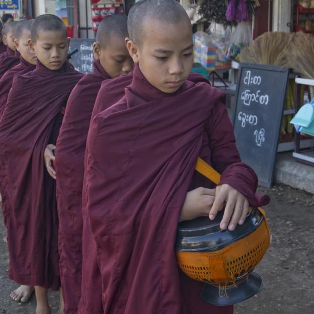 """Young monks receiving food gifts in Bagan, Myanmar"" stock image"