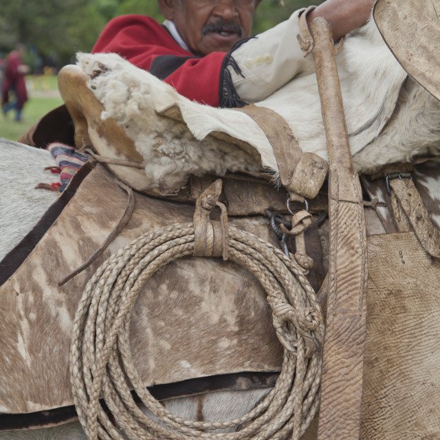 """""""Parade of gauchos in traditional costumes in Salta, Argentina"""" stock image"""