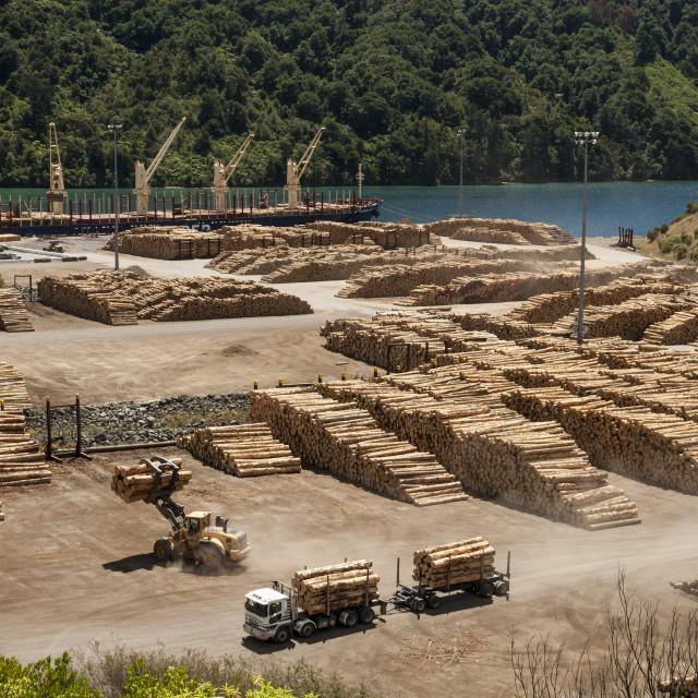 """Timber port, Okiwa Bay, Marlborough Sounds, New Zealand South Island"" stock image"