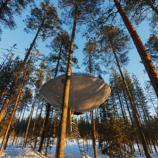 """The UFO room, The Tree Hotel, Lapland, Arctic, Sweden, Scandinavia, Europe"" stock image"