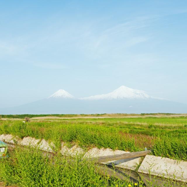 """""""Eurasia, Caucasus region, Armenia, Mount Ararat (5137m) highest mountain in..."""" stock image"""