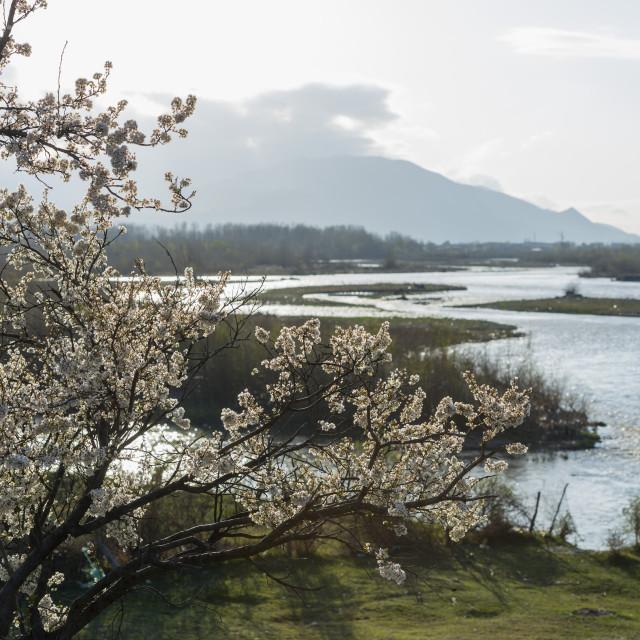 """Eurasia, Caucasus region, Georgia, Shida Kartli, Gori, spring landscape"" stock image"