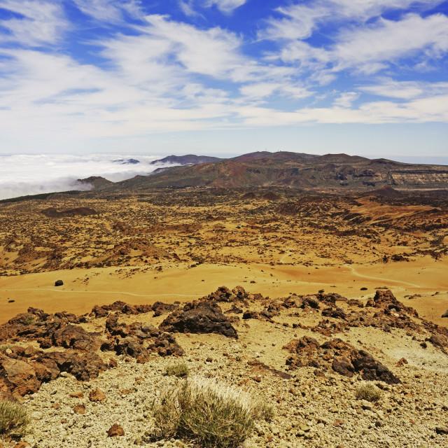 """""""Las Canadas, Parque Nacional del Teide, Tenerife, Canary Islands, Spain, Europe"""" stock image"""