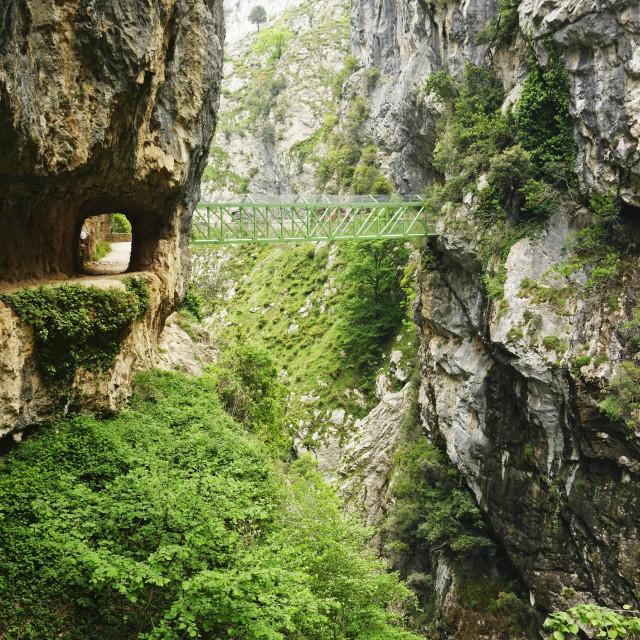 """Footpath through the Desfiladero del Rio Cares, Picos de Europa, Parque..."" stock image"
