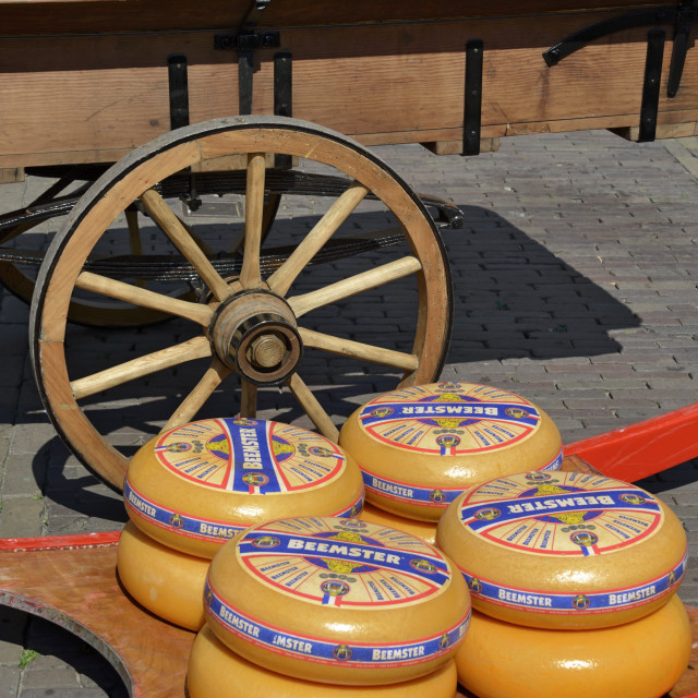 """Cheese wheels on a wooden sledge beside a traditional wooden cart, Waagplein..."" stock image"