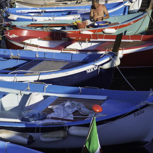 """Vernazza, Cinque Terre, Liguria, Italy, Europe"" stock image"