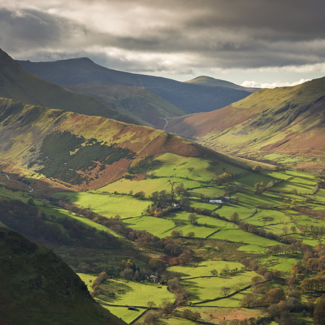 """""""Rich autumn sunlight illuminates Newlands Valley in the Lake District,..."""" stock image"""