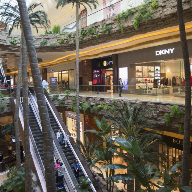 """Cotai Central shopping mall, Cotai Strip, Taipa, Macau, China, Asia"" stock image"