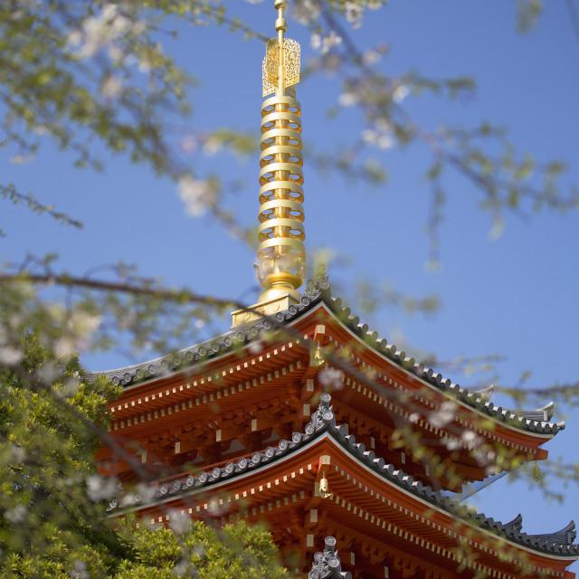 """Pagoda at Tocho-ji Temple, Fukuoka, Kyushu, Japan, Asia"" stock image"