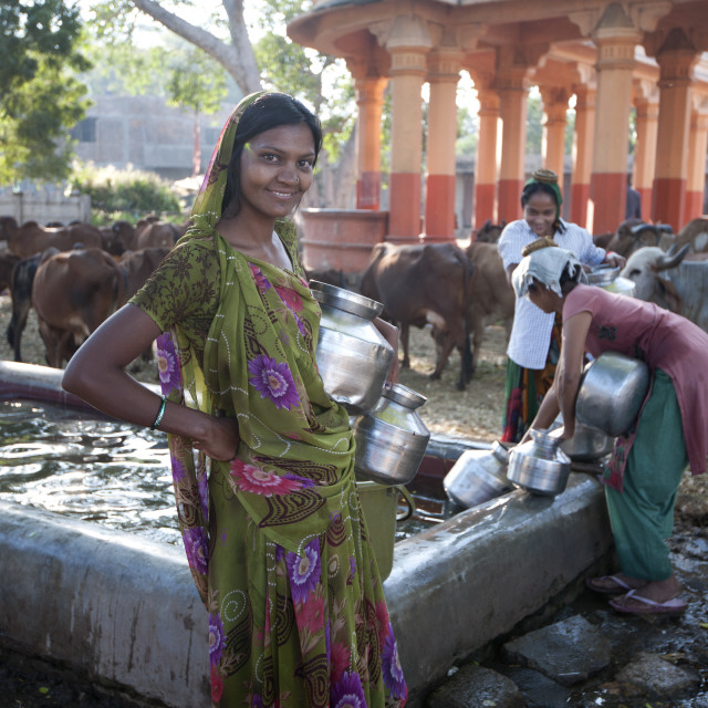 """""""Women filling water pots in the BAPS Swaminarayan Sanstha cattle camp where..."""" stock image"""