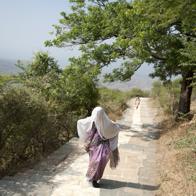 """Jain pilgrim covered in white shawl, climbing Shatrunjaya Hill to Jain..."" stock image"