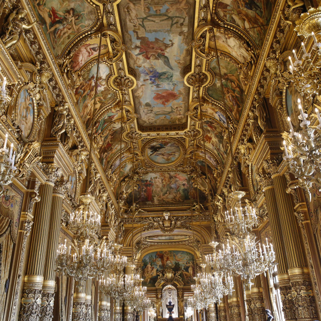 """Palais Garnier. Paris Opera. Celling of the Grand Foyer."" stock image"