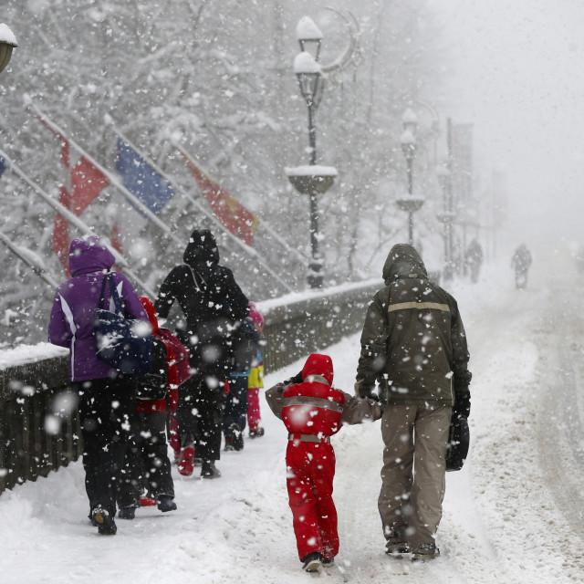 """""""Snowfall."""" stock image"""