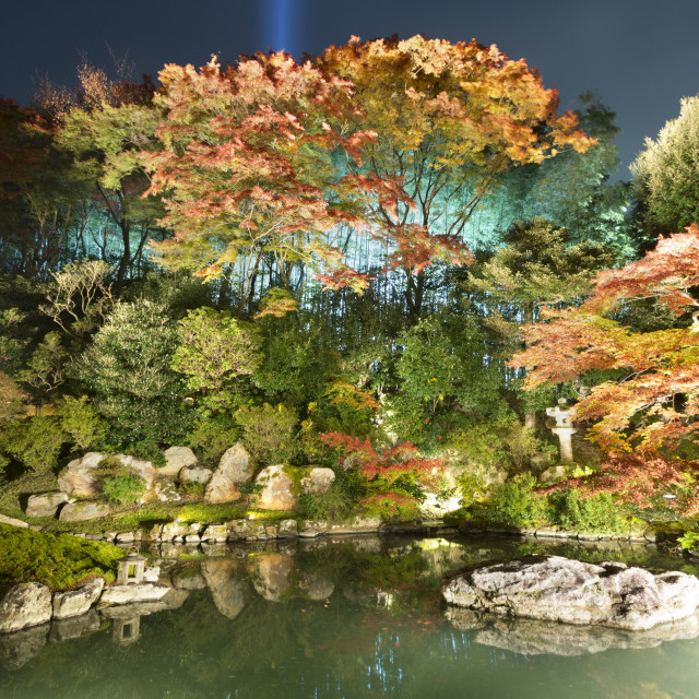 """""""Night illuminations of temple gardens, Shoren-in temple, Southern..."""" stock image"""