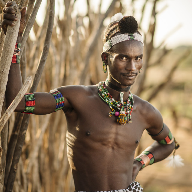 """Portrait of Sabe, Hamar Tribe, Omo Valley, Ethiopia, Africa"" stock image"