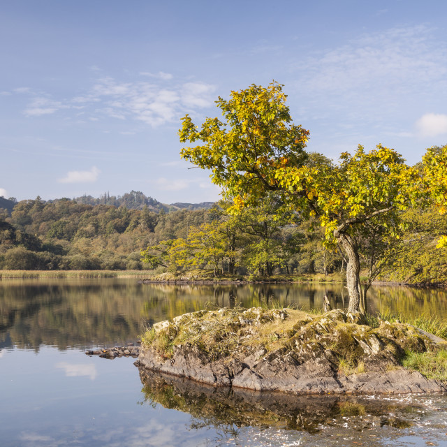 """""""The still water of Rydal Water in the Lake District National Park, Cumbria,..."""" stock image"""