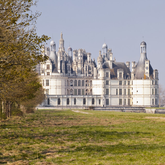 """Looking down the pathway towards the Renaissance Chateau de Chambord in the..."" stock image"