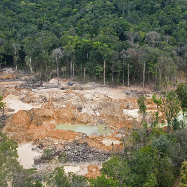 """Destruction of rainforest caused by gold mining, Guyana, South America"" stock image"