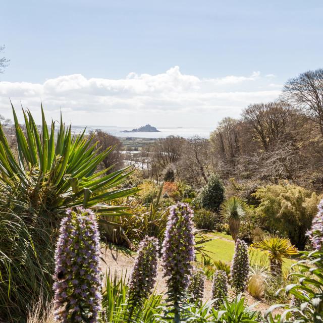 """Tremenheere Sculpture Gardens near Penzance Cornwall England UK"" stock image"