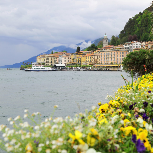 """Colourful flower beds on the promenade at Bellagio Lake Como Ita"" stock image"
